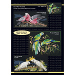 Country Threads Birds on Black - 3 x cross stitch charts