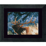 Lanarte Red Deer at dawn PN-0021833